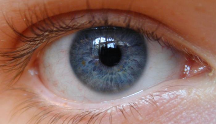 Virginia Ophthalmology Associates